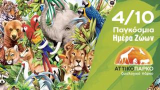 Γιορτάζουμε μαζί την Παγκόσμια Ημέρα των Ζώων