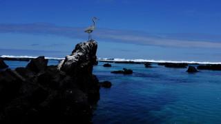 Εντυπωσιακές εικόνες από τα νησιά Γκαλαπάγκος