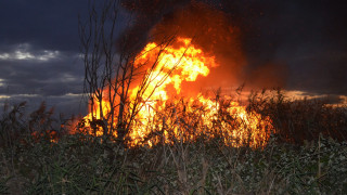 Πυρκαγιά σε δασική έκταση στην Άνδρο