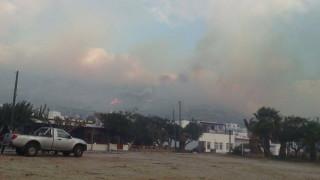 Σε ύφεση η πυρκαγιά στην Άνδρο