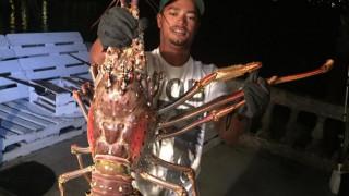 H ψαριά της ζωής τους: Έπιασαν αστακό - γίγα 6,5 κιλών!