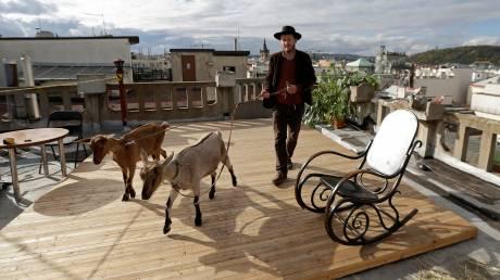 Κατσίκες στέλνουν eco μήνυμα σε εμβληματικό παλάτι της Πράγας