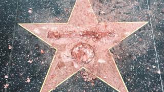 Κατέστρεψαν το αστέρι του Τραμπ στη Λεωφόρο της Δόξας