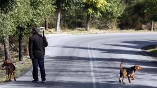 Τραγωδία στα Ιωάννινα: Σκότωσε τον φίλο του γιατί τον πέρασε για αγριογούρουνο