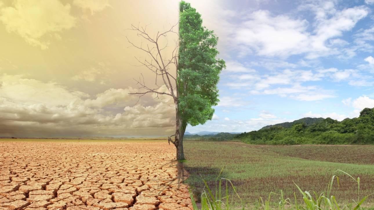 Η ερημοποίηση της Μεσογείου τρομάζει. Τι θα γίνει με την Ελλάδα;