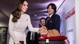 Ο Μπομπ, ο γάτος αδιαφορεί για την Κέιτ Μίντλετον, ενδιαφέρεται μόνο για τους άστεγους