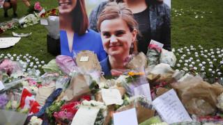 """Δολοφονία Τζο Κοξ: """"Είμαι πολιτικός ακτιβιστής"""", λέει ο κατηγορούμενος"""