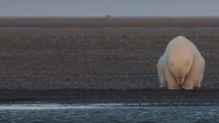 Εφιαλτικές εικόνες κλιματικής αλλαγής