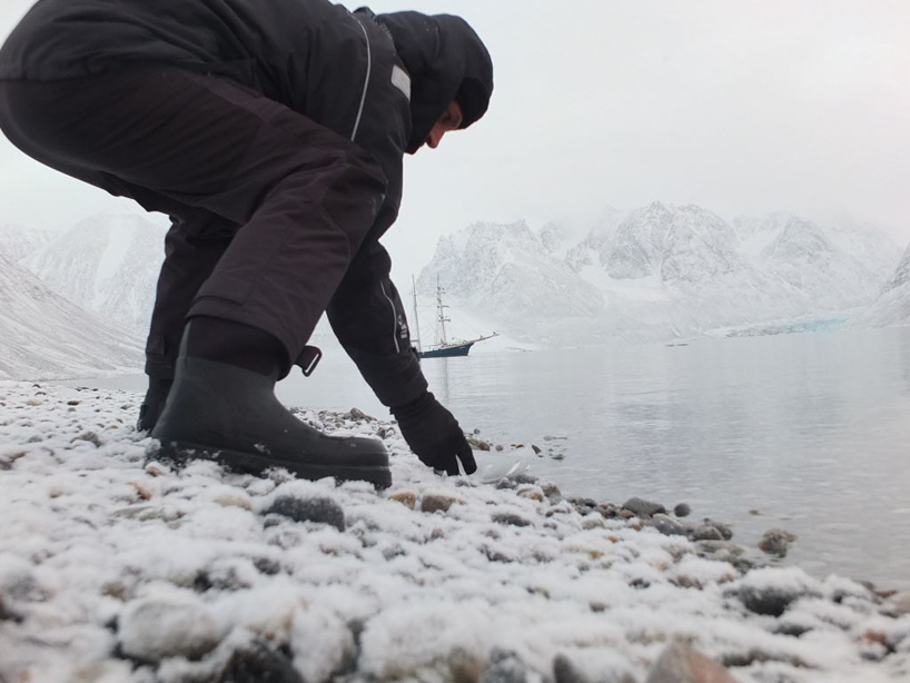 joshua arctic