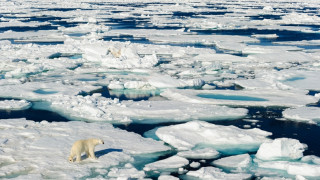 Στο «κόκκινο» το θερμόμετρο στις αρκτικές περιοχές - Ανησυχία επιστημόνων