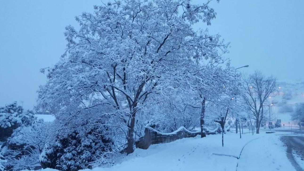Αποτέλεσμα εικόνας για παρνηθα χιόνια