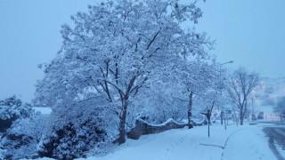 Στα «λευκά» η χώρα – Έπεσαν τα πρώτα χιόνια στην Πάρνηθα