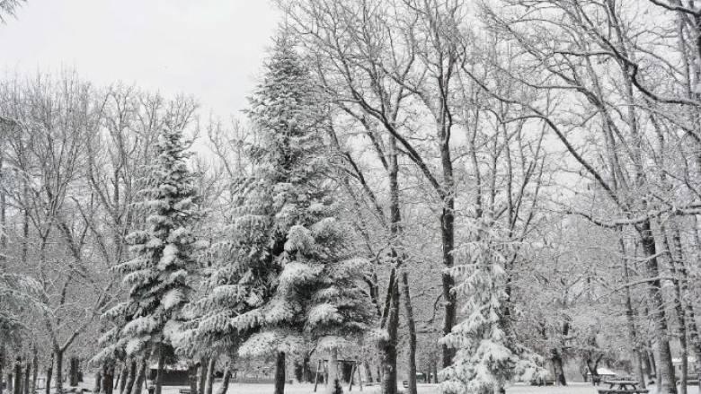 Στον «πάγο» ολόκληρη η χώρα – Χιόνια και στην Αττική  (pics)