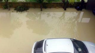 Ζάκυνθος: Καταγραφή ζημιών και υποβολές αιτήσεων για αποζημιώσεις