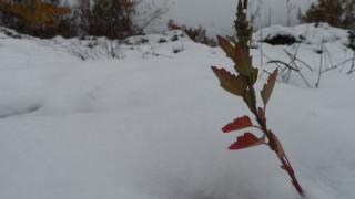 Εντυπωσιακές εικόνες από τα χιονισμένα.. Λευκά Όρη (vid)