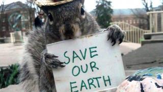 Η γητευτής των σκίουρων: Απίστευτες φωτογραφίες