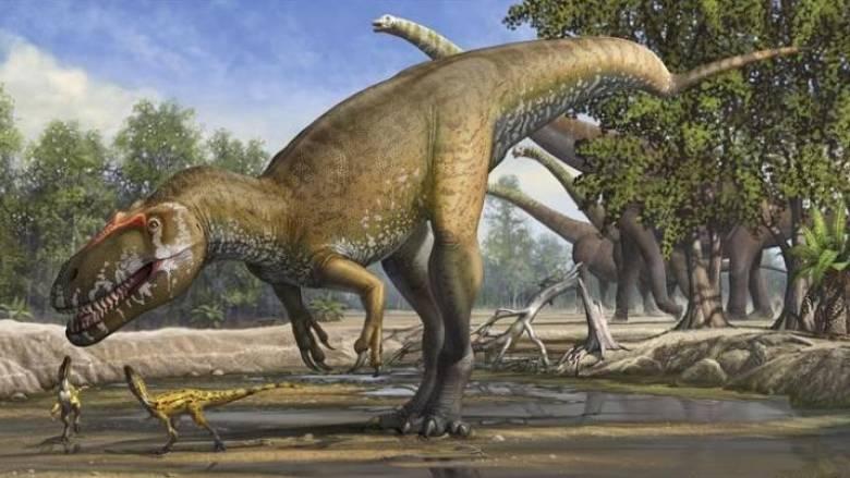 Ανακαλύφθηκε ουρά δεινοσαύρου σε δέντρο ηλικίας 99 εκατ. ετών (pic)