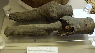 Μουμιοποιημένα πόδια 3.200 ετών βρήκαν την «βασιλική» τους ιδιοκτήτρια (pics)