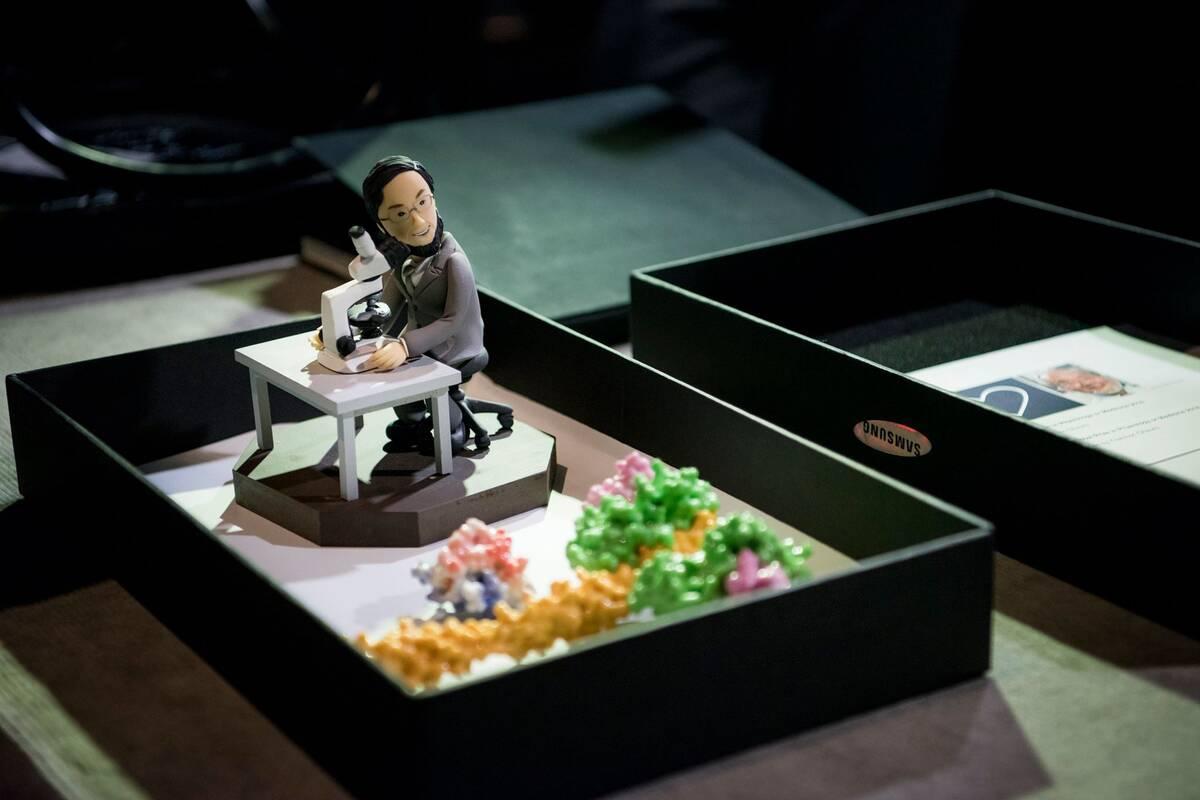oshumi miniature