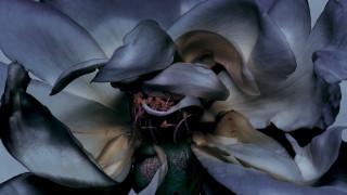Μυρίζοντας το άρωμα του κέρδους. Γιατί τα perfumes είναι τα best sellers κάθε χρονιά