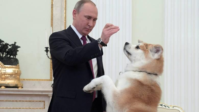 Τα παιχνίδια του Πούτιν με τον σκύλο του στο Κρεμλίνο (pics)