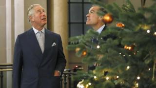 Χριστουγεννιάτικο δέντρο: Τι να προσέξετε