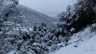 Χιονίζει τώρα στην Πάρνηθα