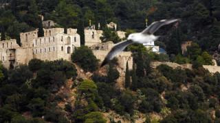 Αθωνιάδα Σχολή: Παντελώς ανυπόστατα τα περί 12χρονου μοναχού στο Άγιο Όρος