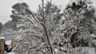 Καιρός: Αγριεύουν τα φαινόμενα με χιόνια και κρύο