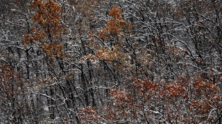 Καιρός: Βροχές και χιονοπτώσεις προβλέπει για την Πέμπτη η ΕΜΥ