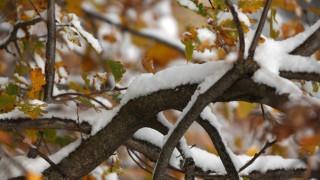 Καιρός: Χριστουγεννιάτικο ρεβεγιόν με χιόνι και παγετό