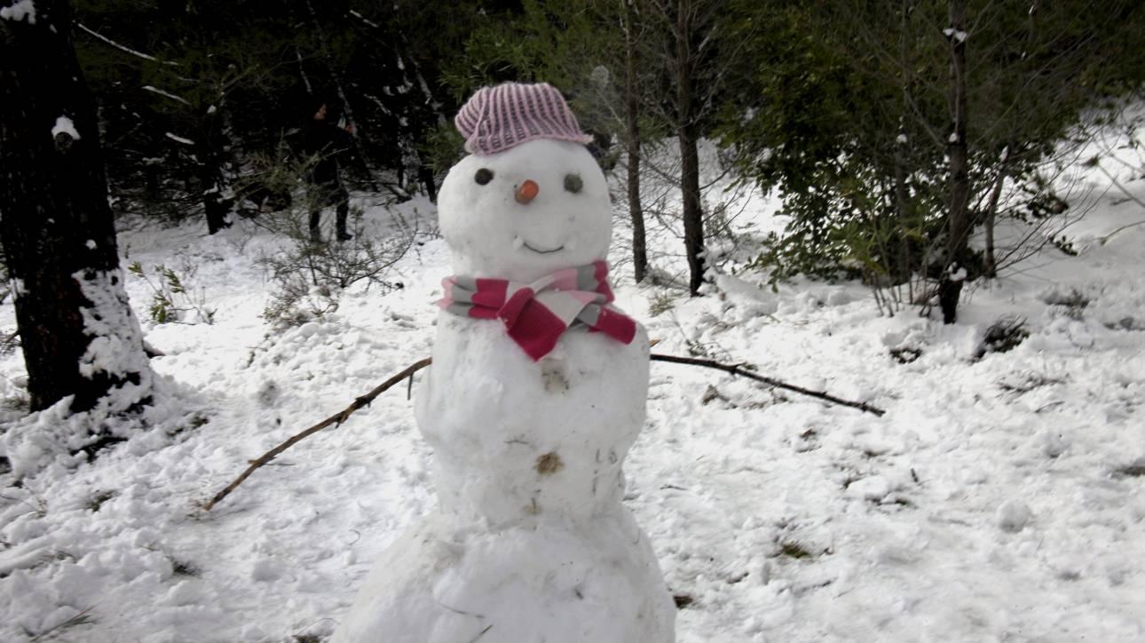 Καιρός: Με τσουχτερό κρύο και χιόνια αποχαιρετά το 2016
