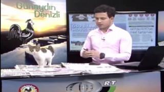 Αδέσποτος γάτος εισέβαλε σε στούντιο ζωντανής εκπομπής και θρονιάστηκε... (vid)
