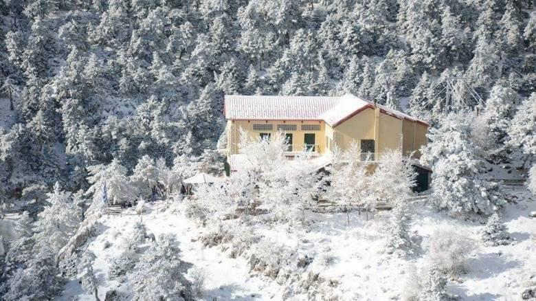 Καιρός: Πυκνή χιονόπτωση στην Πάρνηθα (vid)