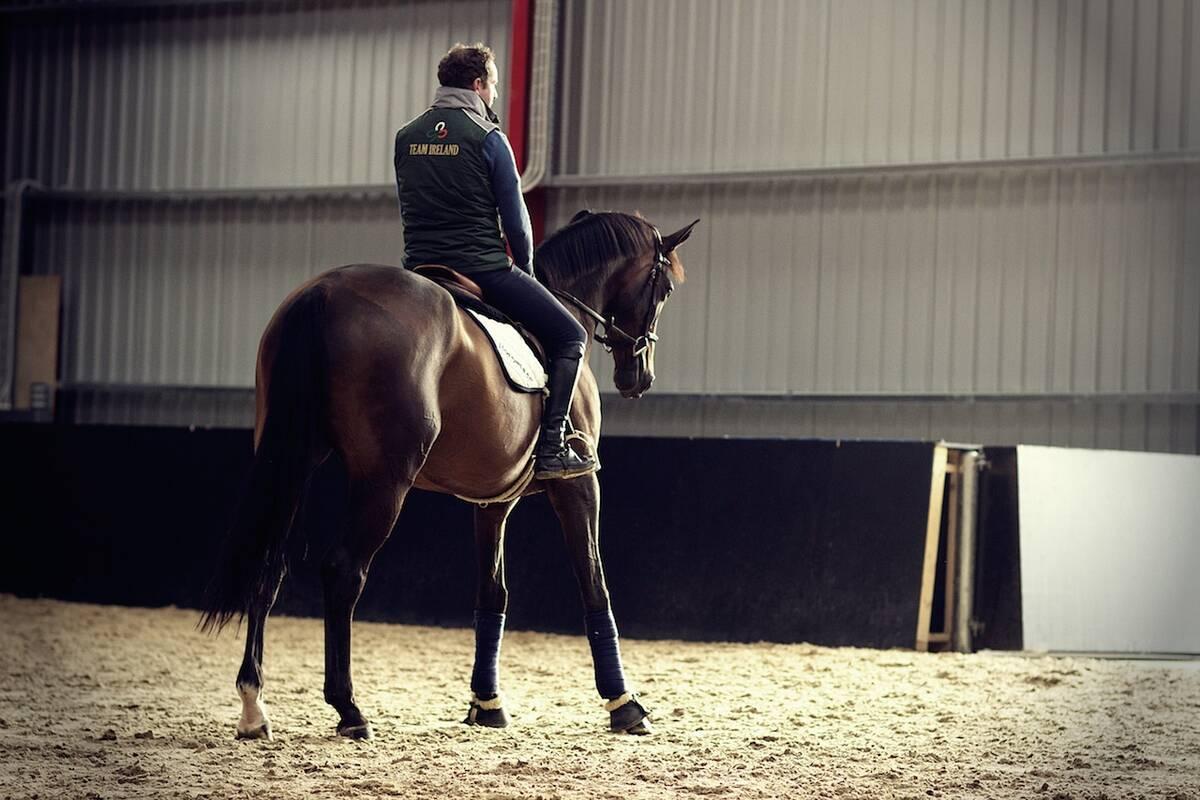athina horse
