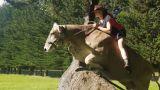 Λίλακ: Η αγελάδα που νομίζει ότι είναι άλογο (pics&vid)