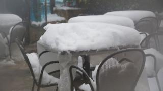 Το χιόνι... σκέπασε ταβέρνα στην Κρήτη (pics)