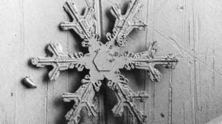 Το χιόνι στο μικροσκόπιο