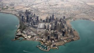Με κολύμπι και σαφάρι αποχαιρετούν το 2016 στο Κατάρ