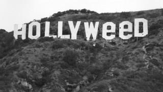 Σαράντα χρόνια πριν, βανδάλισαν το Χόλιγουντ για πρώτη φορά