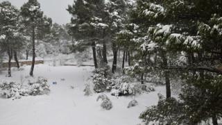 Καιρός: Θεοφάνεια με χιόνι και πολύ χαμηλές θερμοκρασίες
