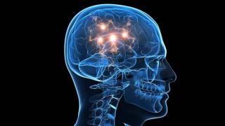 Η περιοχή του εγκεφάλου που αναγνωρίζει πρόσωπα αναπτύσσεται και μετά την εφηβεία