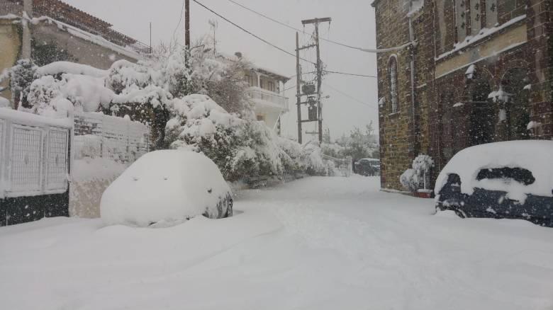 Σε κατάσταση έκτακτης ανάγκης η Κύμη - τι καταγγέλλουν οι κάτοικοι στο CNN Greece