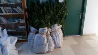 Θεσσαλονίκη: Καλλιεργούσε υδροπονική κάνναβη στο σπίτι του