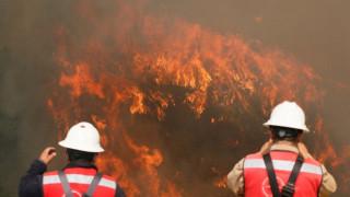 """Σε """"κατάσταση ανάγκης"""" η Χιλή λόγω δασικών πυρκαγιών"""
