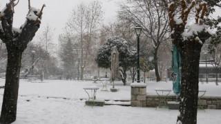 Θεσσαλονίκη: Ποια σχολεία θα παραμείνουν κλειστά