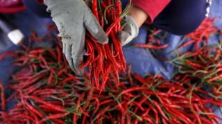 Ευχάριστα νέα για όσους αγαπούν τις καυτερές πιπεριές- σε τι βοηθούν;