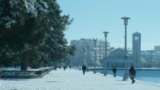 Ο χιονιάς «γονάτισε» τον Βόλο - Μαρτυρίες κατοίκων