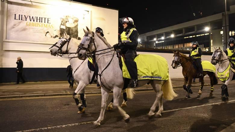 Περιπολίες με άλογα στους εθνικούς δρυμούς;