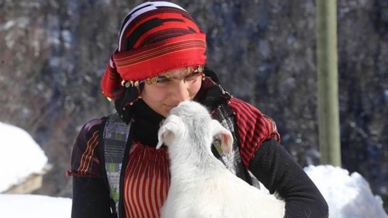 Η περιπέτεια της 11χρονης βοσκοπούλας που ξεγέννησε την κατσίκα της στο βουνό